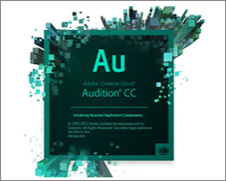 Adobe Audition Editor